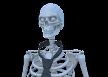 Vlad cel Mort profil